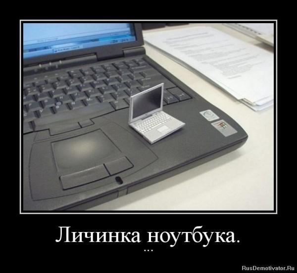 Открытки любым, прикольные картинки про ноутбук